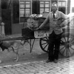 Dirk Boelhouwers met zijn hondenkar